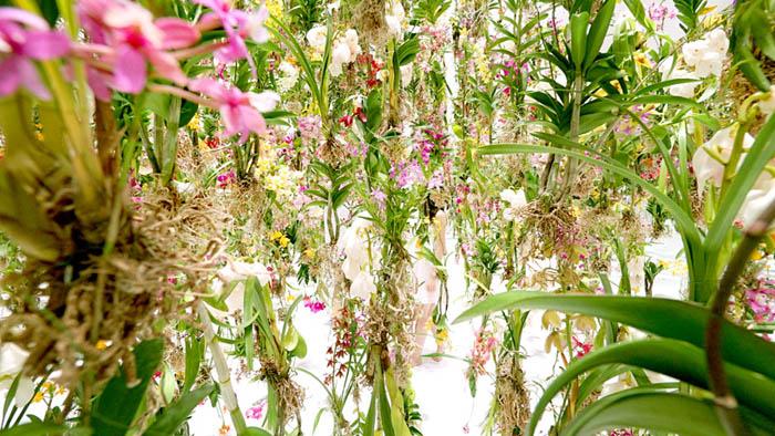 teamlab-floating-flower-garden-designboom-12