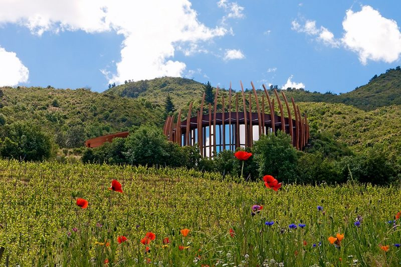 item10.rendition.slideshowHorizontal.best-designed-wineries-11-lapostolle-clos-apalta-chile